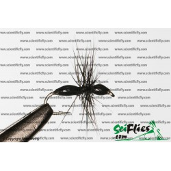 SciFlies Epoxy Ant Black 16 3Pack