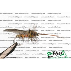 SciFlies Silver Sedge Standard 14 3Pack