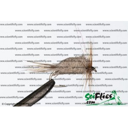 SciFlies DDD Natural 14 3Pack