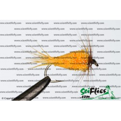 SciFlies DDD Orange 10 3Pack