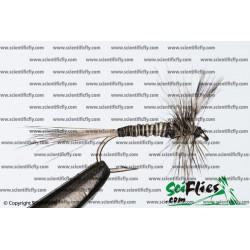 SciFlies Mosquito Standard 18 3Pack