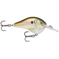 "Rapala Dives-To DT4 Live River Shad 2"" 5/16oz"