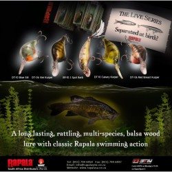 "Rapala Dives-To DT10 Canary Kurper 2 1/4"" 3/5oz"